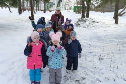 Экскурсия в зимний парк